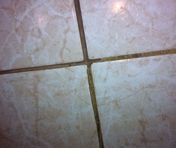 грязные швы между плиткой портят внешний вид